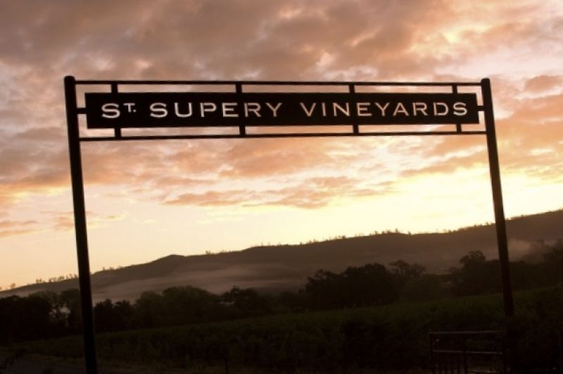 Photo for: St. Supery Estate Vineyards and Winery - Napa Valley